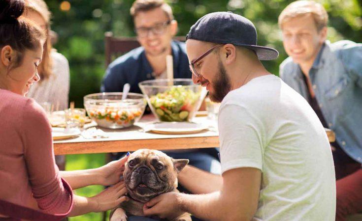 grote familie met hond in omheinde tuin