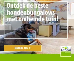 ontdek de beste hondenbungalows met omheinde tuin banner