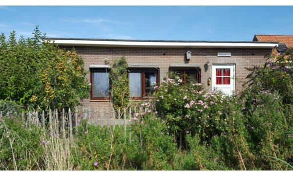 Natuurhuisje in Biggekerke 32328 - Nederland - Zeeland - 3 personen