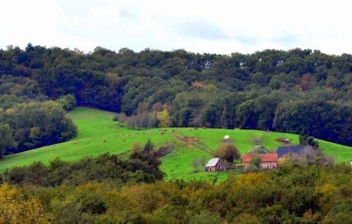 Natuurhuisje in Louignac 28162 - Frankrijk - Limousin - 2 personen