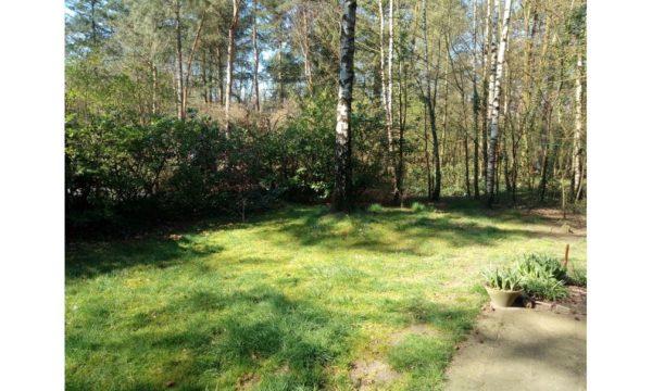 Natuurhuisje in Winterswijk 40673 - Nederland - Gelderland - 5 personen