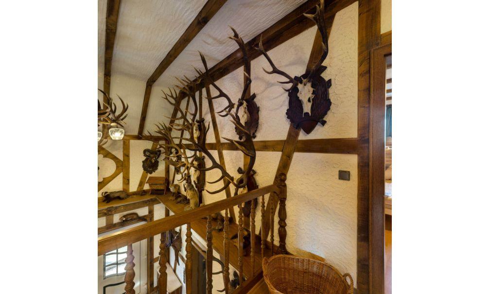 Natuurhuisje in Ruppichteroth 42291 - Duitsland - Noordrijn-westfalen - 12 personen