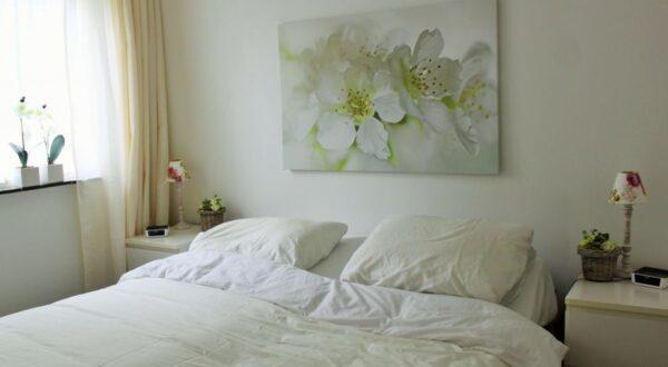 Natuurhuisje in Appelscha 35589 - Nederland - Friesland - 2 personen - slaapkamer