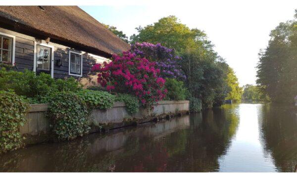 Natuurhuisje in Giethoorn 50427 - Nederland - Overijssel - 4 personen