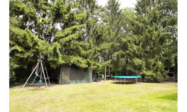 Natuurhuisje in Koekange 23896 - Nederland - Drenthe - 5 personen - omheinde tuin