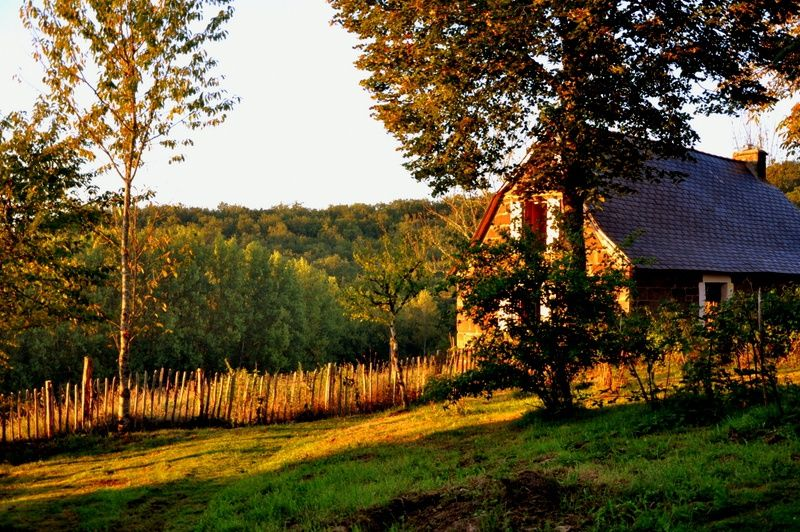 Natuurhuisje in Louignac 28162 - Frankrijk - Limousin - 2 personen - omheinde tuin