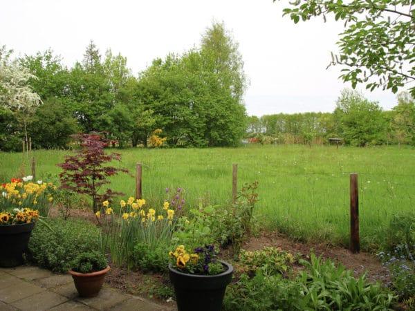 Natuurhuisje in Sintjohannesga 15178 - Nederland - Friesland - 8 personen - omheinde tuin met vrij uitzicht