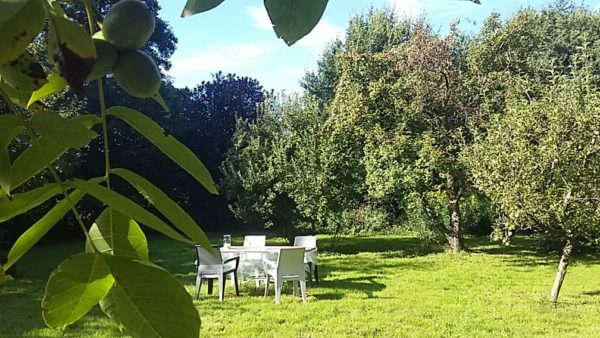 Natuurhuisje in Veelerveen 25152 - Nederland - Groningen - 4 personen - grote omheinde tuin
