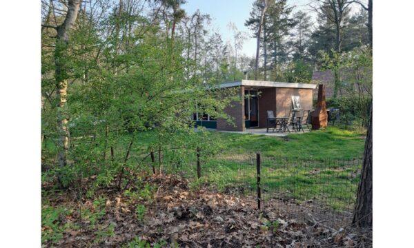 Natuurhuisje in Winterswijk 28105 - Nederland - Gelderland - 4 personen - omheinde tuin