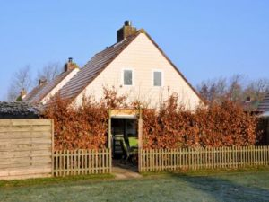 Shelley Beach House - Nederland - Zuid-Holland - 6 personen