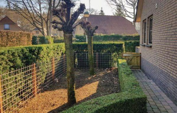Vakantiehuis Lunteren - Nederland - Gelderland - 12 personen - omheinde tuin