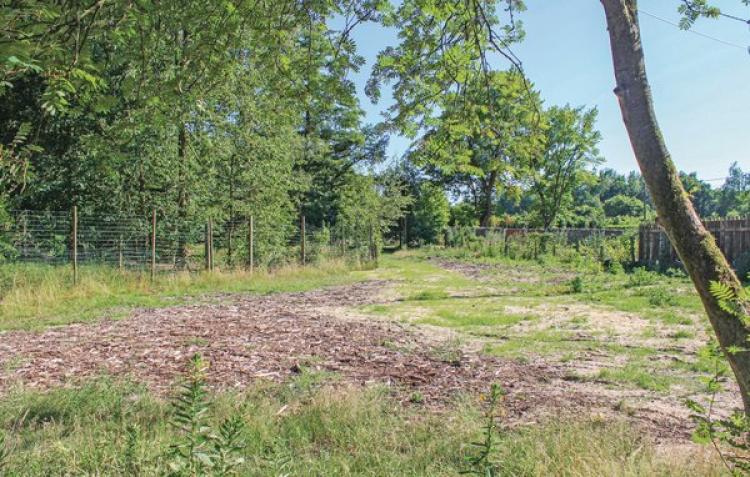 Vakantiehuis Meeuwen-Gruitrode - België - Belgisch-Limburg - 4 personen - omheinde ruige tuin