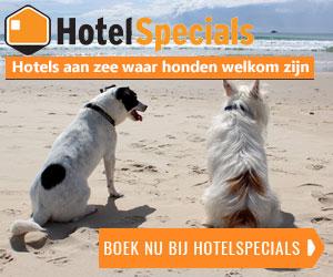 hotelspecials aan de kust honden welkom