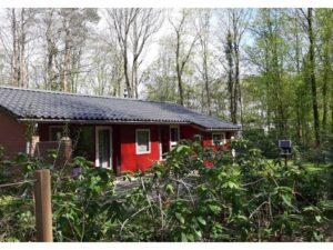 Natuurhuisje in Winterswijk 32873 - Nederland - Gelderland - 6 personen