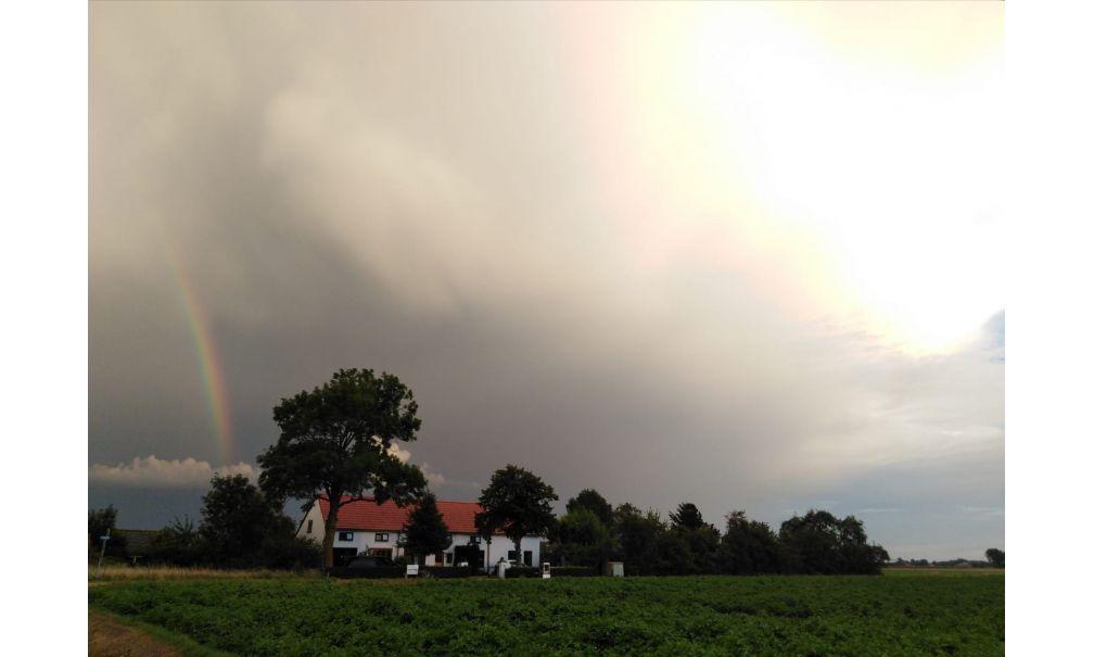 Natuurhuisje in Ijzendijke 56653 - Nederland - Zeeland - 6 personen